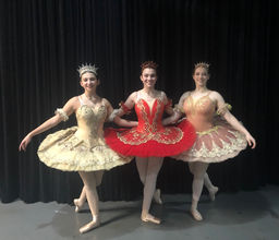 Sleeping Beauty Ballet Becomes a Moving Story Told Through Dance